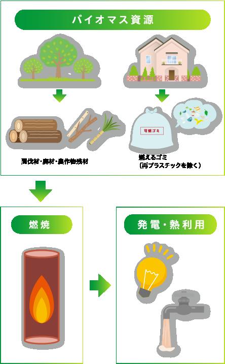 バイオマス資源,燃焼,発電・熱利用
