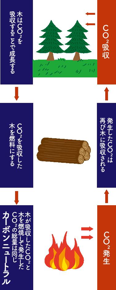 CO2吸収,木はCO2を吸収することで成長する,CO2を吸収した木を燃料にする,木が吸収したCO2と木を燃焼して発生したCO2の総量は同じカーボンニュートラル,CO2発生,発生したCO2は再び木に吸収される